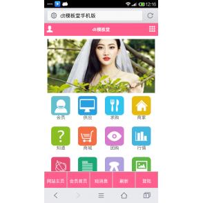 destoon5.0手机模板,豪华大气,美工一流的destoon手机模板,官网半价促销
